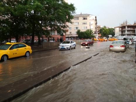 Ankara sel