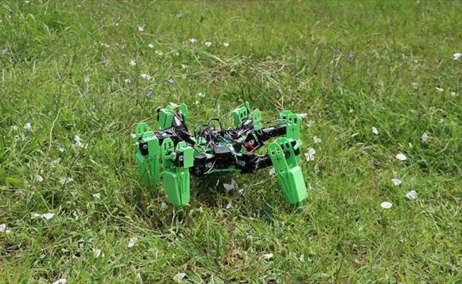 Askeri operasyonlar için örümcek robot geliştirdiler