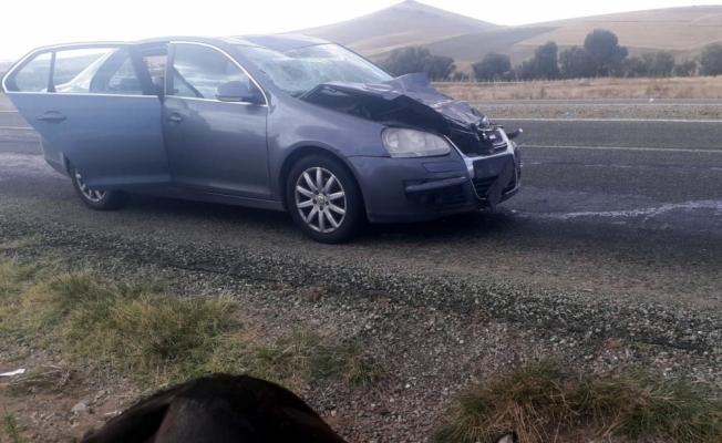 Kırşehir'de otomobil eşeğe çarptı