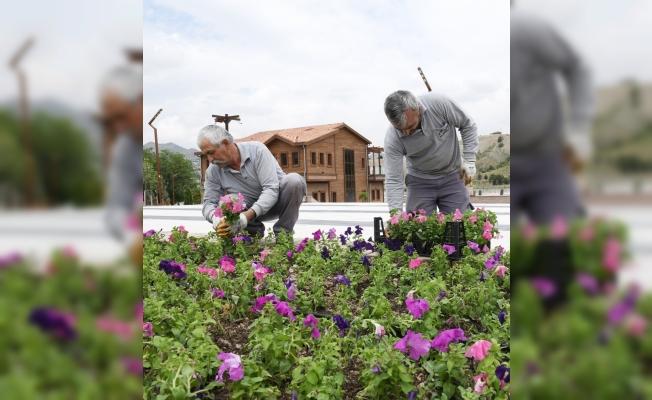 Mamak'ta cadde ve parklar çiçekle süsleniyor