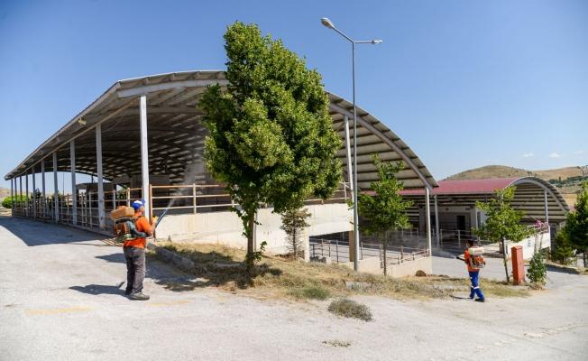 Altındağ Belediyesi Kurban Bayramı'na hazır