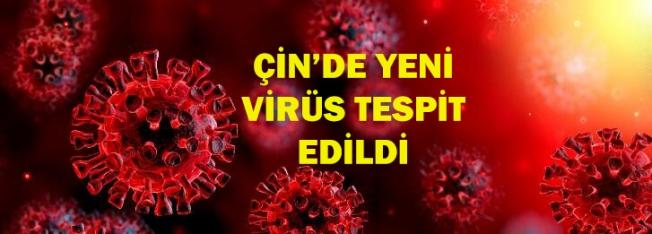 Çin'de pandemi potansiyeli taşıyan yeni bir virüs tespit edildi!