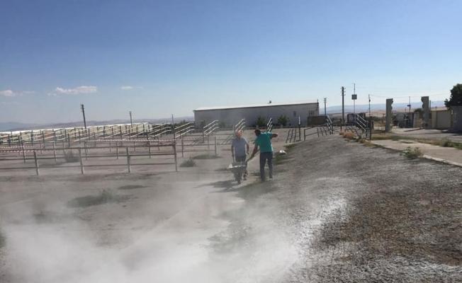 Kurban Bayramı öncesi canlı hayvan pazarı dezenfekte edildi