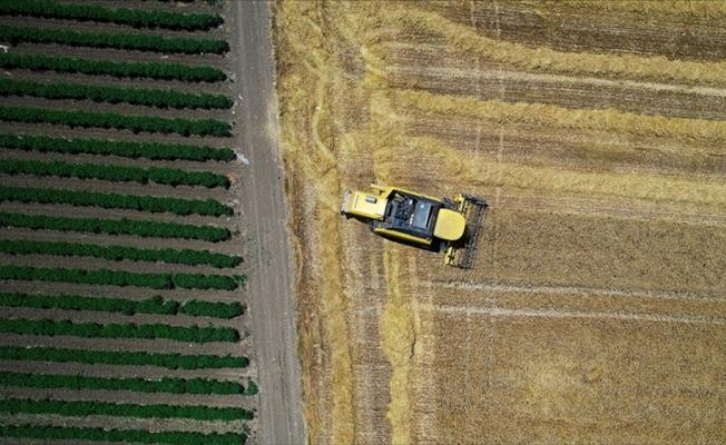Tarım ihracatında Almanya ve Irak ön plana çıktı