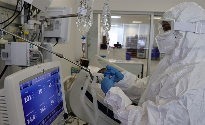 Türkiye'de 24 bin 733 kişinin Kovid-19 testi pozitif çıktı, 347 kişi hayatını kaybetti