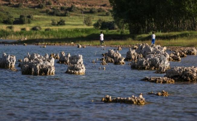 Van Gölü'nde su çekilince binlerce yıllık mikrobiyalitler ortaya çıktı