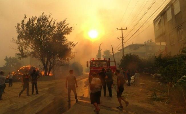 Bakan Pakdemirli'den yangınlarla ilgili son dakika açıklamalar