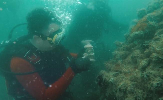 Bakan Pakdemirli 'hayalet ağlar'a dikkati çekmek için dalış gerçekleştirdi