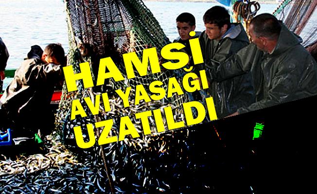 Hamsi avı 28 Ocak'a kadar yasak