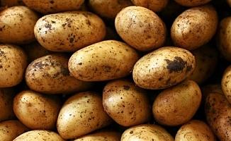 """""""Patates Tüketelim"""""""