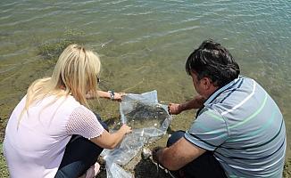Kırıkkale'de 36 bin pullu sazan göletlere bırakıldı