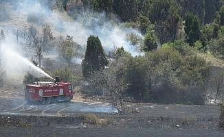 Beyşehir'de tarım arazisi ve orman yangını