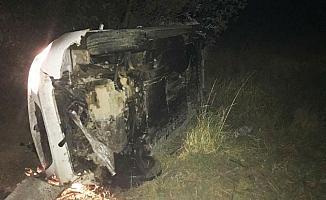 Otomobil domuza çarptı:1 yaralı