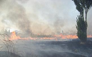 Seydişehir'de anız yangını