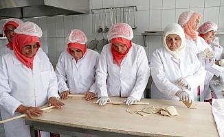 Çiftçi kadınlar organik ürünlerle işletmeci oldu