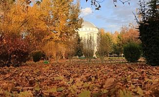 Sonbahar Konya'ya elveda diyor