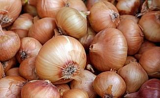 Soğan fiyatlarında düşüş beklentisi