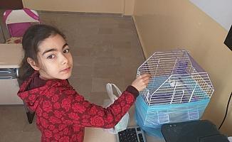 Ulaş'ta özel eğitim öğrencilerine hayvan sevgisi aşılanıyor