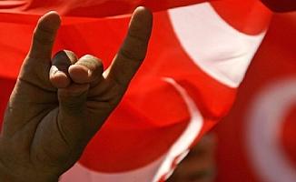 Türkiye'den Avusturya'ya Bozkurt Tepkisi: İlişkilerimize Etkileri Olur