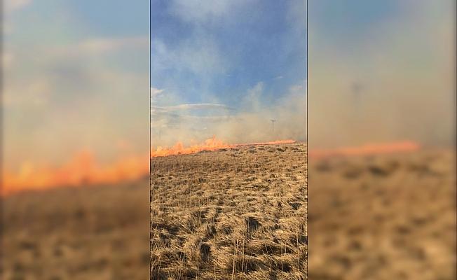 Ulaş'ta arazi yangını