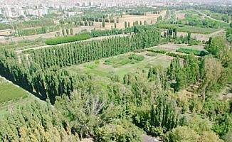 AOÇ tarımsal üretim alanı kiralayacak
