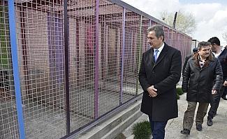 Başkan Köse, barınağı denetledi