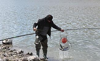 Kafesten kaçan balıklar amatör balıkçıları sevindirdi