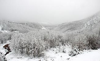 Sivas'ın yüksek kesimlerine kar yağdı
