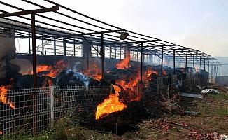 Şarkışla'da besi çiftliğinde yangın