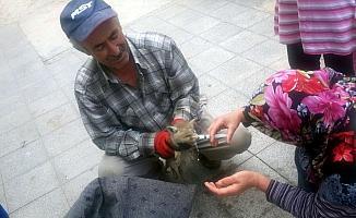 Yaralı tilki yavrusu tedaviye alındı