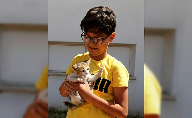 Araca sıkışan yavru kediyi itfaiye kurtardı