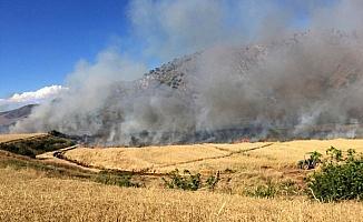 Kırıkkale'de 500 dönümlük ekili alan yandı