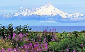 Alaska'da tüm zamanların sıcaklık rekoru