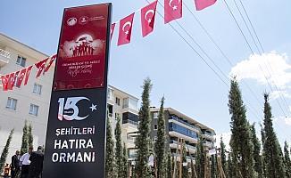 Altındağ'da 15 Temmuz şehitleri için fidan dikildi