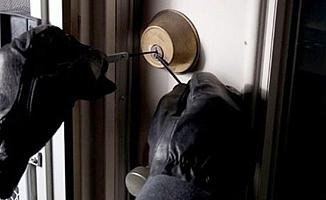 Ankara'da hayvan hırsızlığı operasyonu
