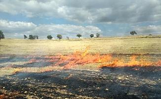 Beyşehir'de tarla yangını