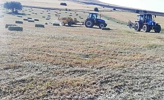 Çiftçilerin zorlu ot biçme mesaisi