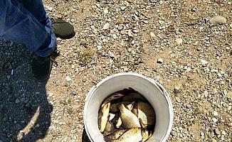 Gölette boy limiti altı balık avına 3 bin 360 lira ceza
