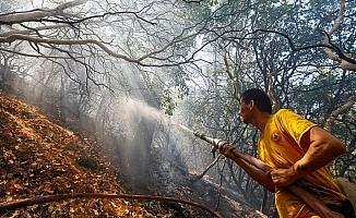 İzmir'deki orman yangınında soğutma çalışmaları sürüyor