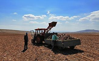 Konya ovasında ekim hazırlığı