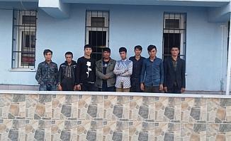 Niğde'de 8 düzensiz göçmen yakalandı