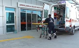 Ceviz hasatı nedeniyle hastanelere gelen düşme vakası arttı