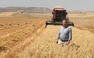 BBP Genel Başkanı Destici, baba ocağında biçerdöverle yulaf hasadı yaptı