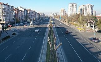 Kayseri Büyükşehir Belediyesinden ağaç bakım ve budama çalışması
