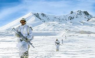 Bitlis'te Yıldırım-16 Sehi Ormanları operasyonu