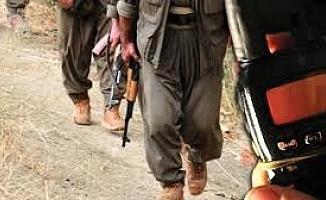 HDP'li Leyla Güven'in PKK'ya desteği, teröristlerin sözde yöneticilere gönderdiği raporlara yansıdı