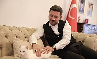 Nevşehir Belediye Başkanı Rasim Arı'nın sahiplendiği kediye belediyede bakılacak