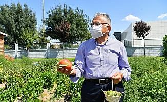 Kayseri Büyükşehir Belediyesi 2021 yılında çiftçiye desteklerini sürdürecek