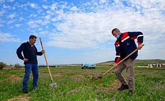 Kahramankazan'da meyveleri ihtiyaç sahiplerine dağıtılacak 3 bin 500 fidan toprakla buluşturuldu