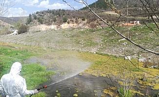 Kızılcahamam Belediyesi haşerelerle mücadele çalışmalarına aralıksız devam ediyor